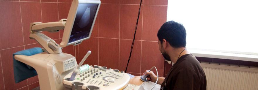 УЗД вагітності Клініка Альтернатива